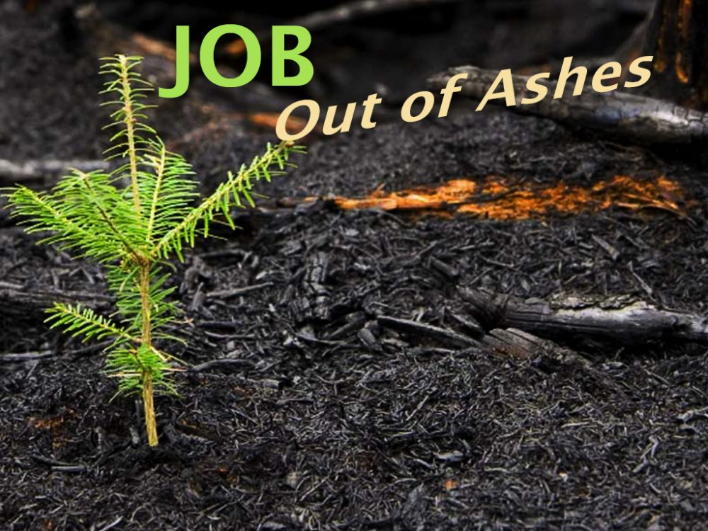 Job: Out of Ashes